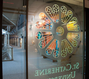 Decorative Window Treatments